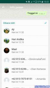 Cara Melihat Pesan di Grup Whatsapp Tanpa Ketahuan di Baca 4