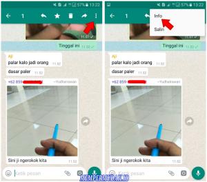 Cara Mengetahui Pesan Grup Whatsapp Sudah di Baca 4