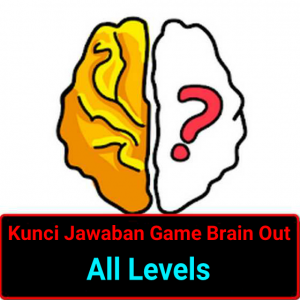 brain out level 45
