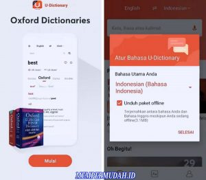 Cara Translate Bahasa China di Aplikasi HP Android 3